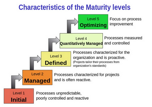 characteristics of the maturity levels resize